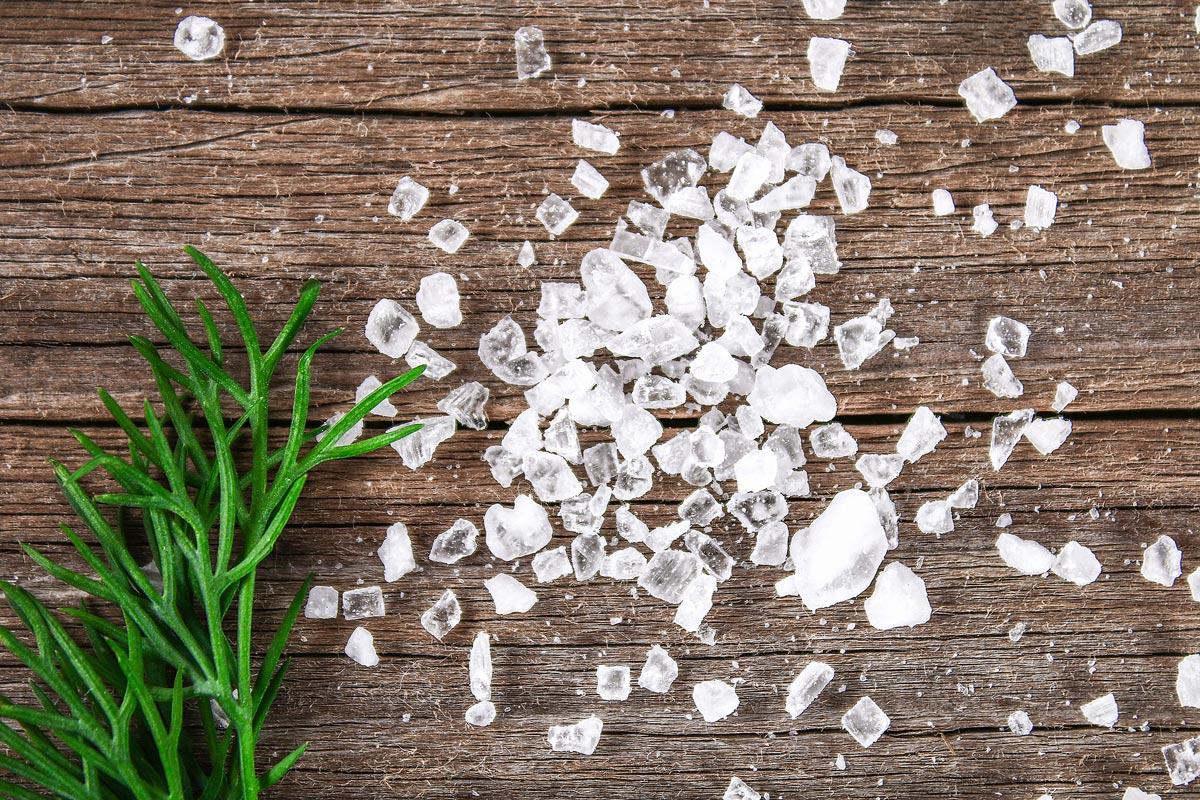 Grobes Meersalz und ein Rosmarinzweig. Das grüne Salz Kräutersalz-Blog