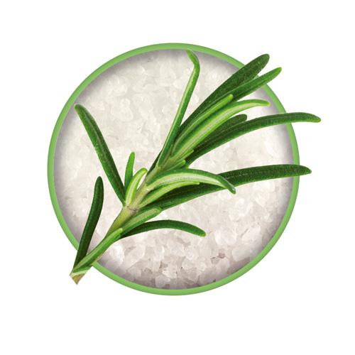 Rosmarin Zutat vom Bio-Kräutersalz Das grüne Salz