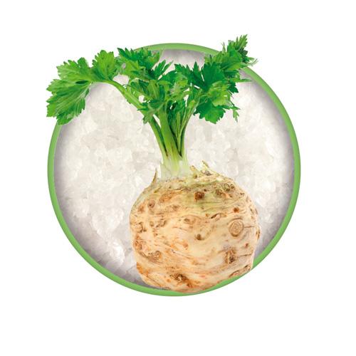 Sellerieknolle mit Grün auf Meersalz, Zutat vom Bio-Kräutersalz Das grüne Salz