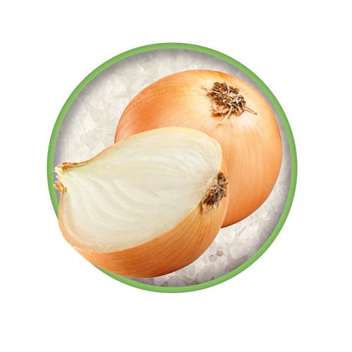 Bio-Zwiebel ist eine der Zutaten im Bio-Kräutersalz Das grüne Salz.