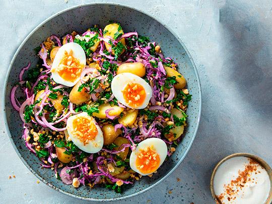 Krautsalat mit Ei Das grüne Salz