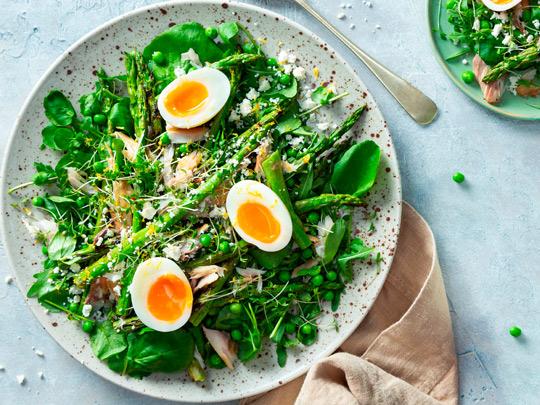 Makrelen-Spargel-Eier-Salat
